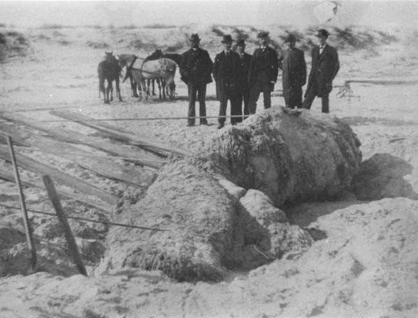 st-augustine-blob-1896